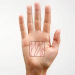 Venenscanner - Handvenen - Zutrittskontrolle via biometrische Merkmale